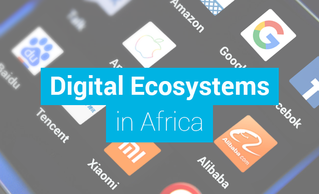 Digital Ecosystems in Africa (pt1)