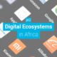 Digital Ecosystems in Africa pt2